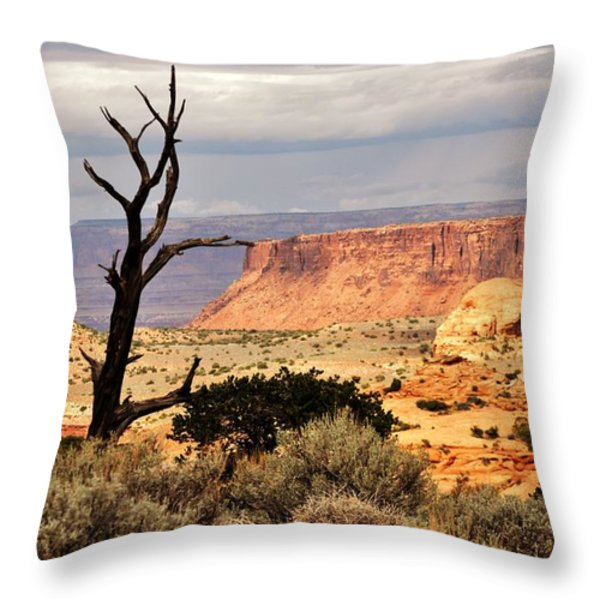 Tree And Mesa Throw Pillow by Marty Koch