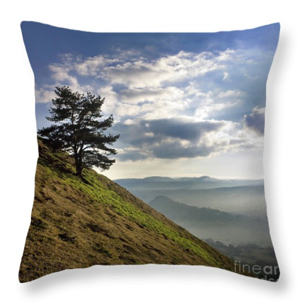 Tree And Misty Landscape Throw Pillow by Bernard Jaubert