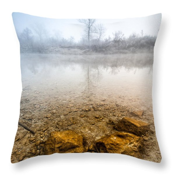 Tree and rocks Throw Pillow by Davorin Mance
