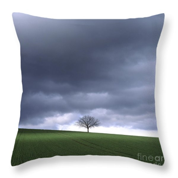 Tree And Stormy Sky  Throw Pillow by Bernard Jaubert