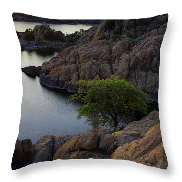 Tree At Sunset At The Granite Dells Arizona Throw Pillow by Dave Dilli