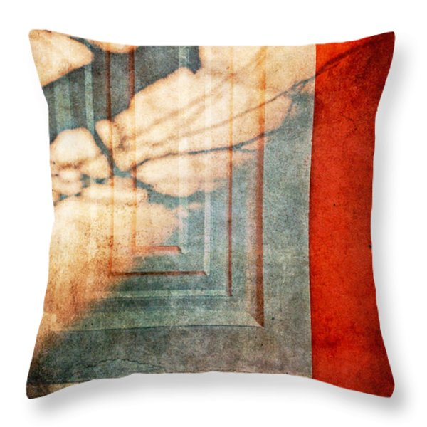 Tree Branches Shadow On Wall Throw Pillow by Silvia Ganora