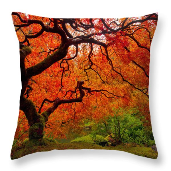 Tree Fire Throw Pillow by Darren  White