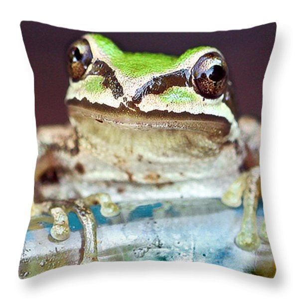 Tree Frog Throw Pillow by Jean Noren
