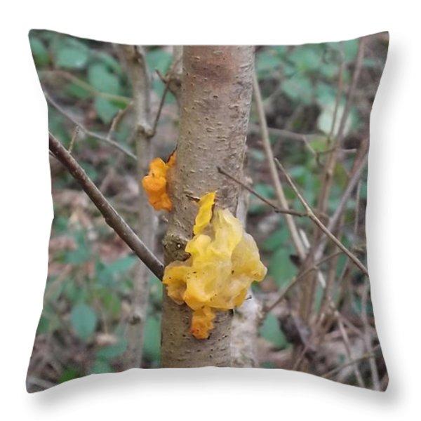 Tree Fungus Throw Pillow by John Williams