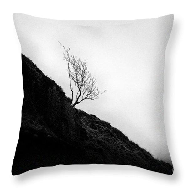 Tree in mist Throw Pillow by John Farnan