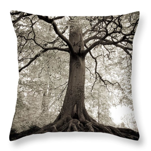 Tree of Life Throw Pillow by Dominique De Leeuw