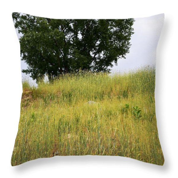 Tree On A Hill Throw Pillow by Sarah Holenstein