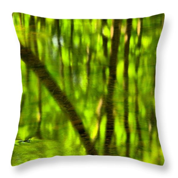 Tree Reflections Throw Pillow by Adam Jewell
