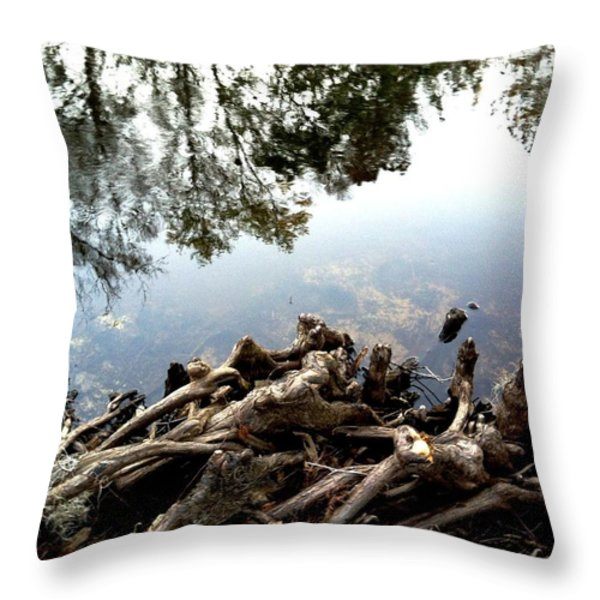 Tree Reflections Throw Pillow by Robin Lewis