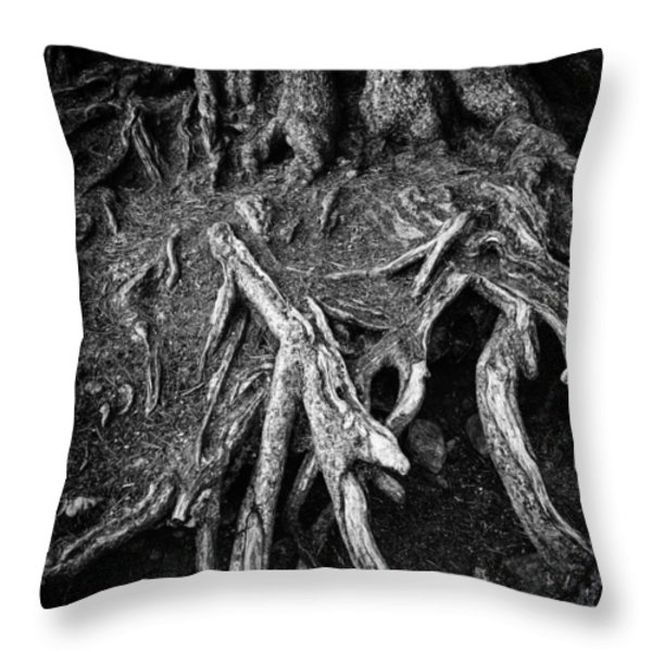 Tree roots black and white Throw Pillow by Matthias Hauser