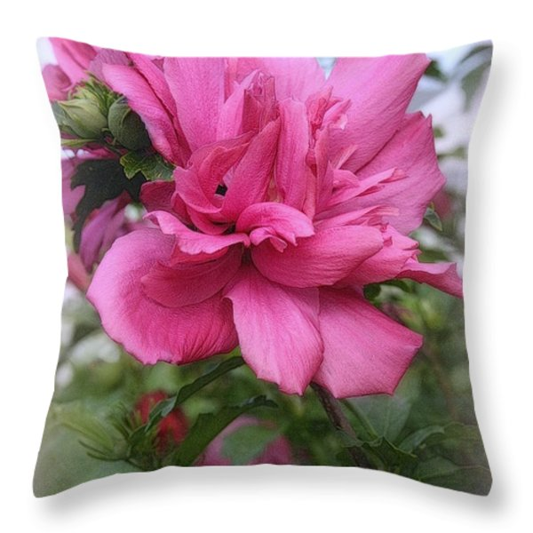 Tree Rose Of Sharon Throw Pillow by Kay Novy