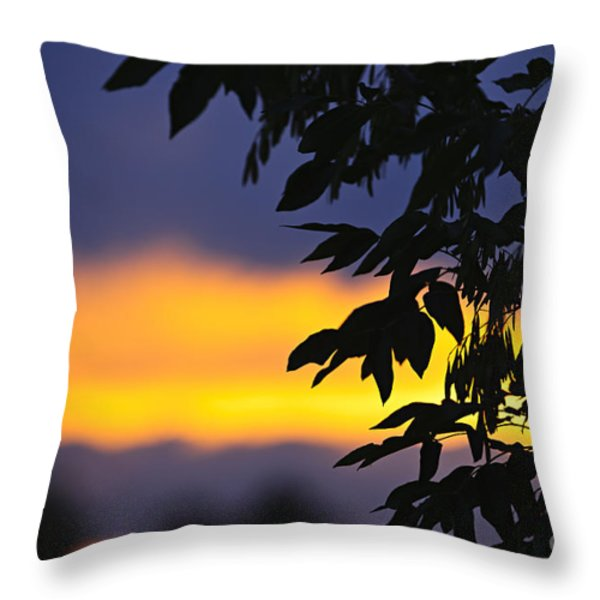 Tree silhouette over sunset Throw Pillow by Elena Elisseeva