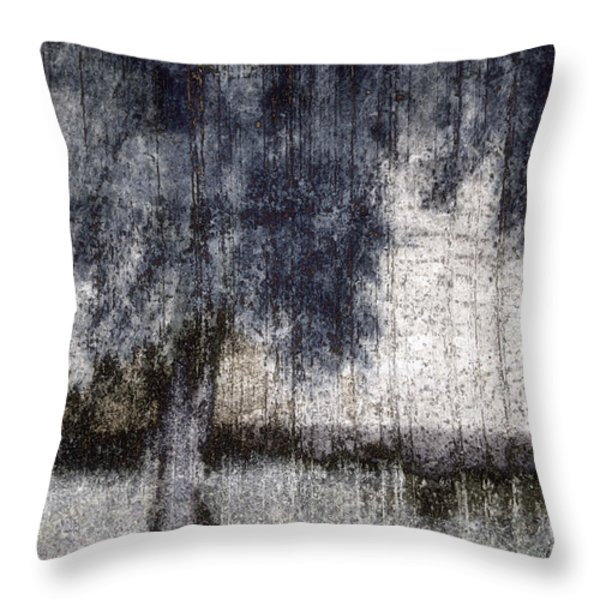 Tree Through Sheer Curtains Throw Pillow by Carol Leigh