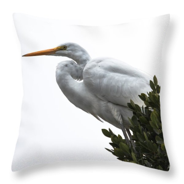 Treed Egret Throw Pillow by Robert Bales