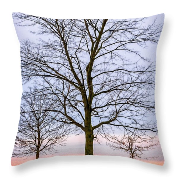 Trees at the Boardwalk in Toronto Throw Pillow by Elena Elisseeva