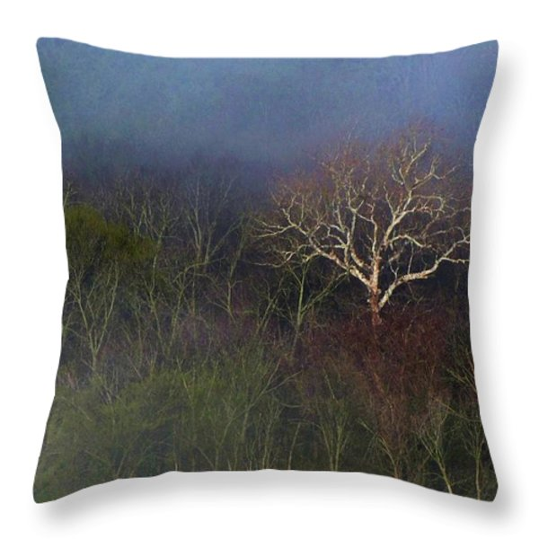 Trees In Fog 4 Throw Pillow by Dena Kidd