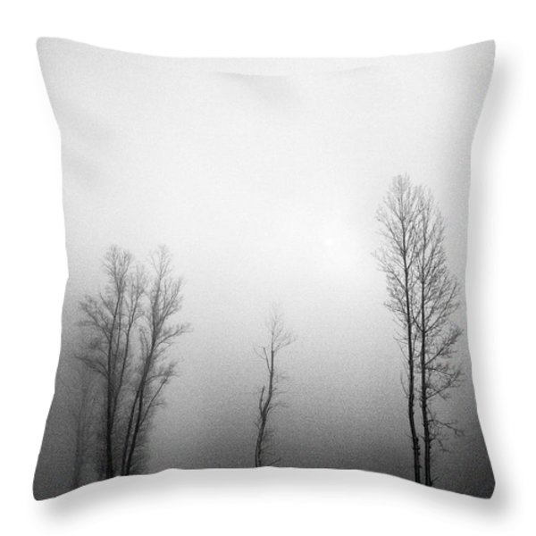Trees in mist Throw Pillow by Davorin Mance