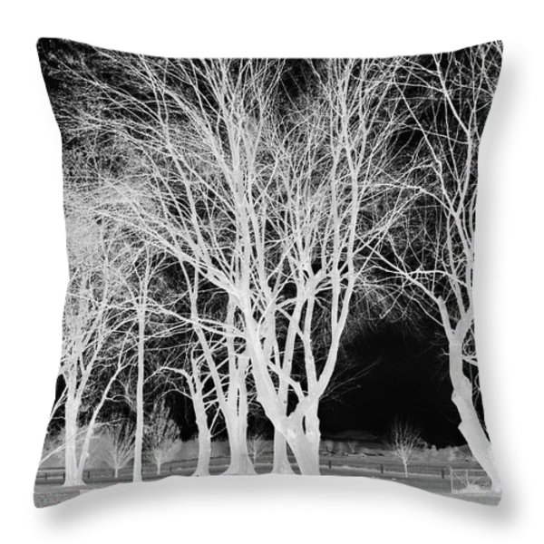 Trees In Park 2 Throw Pillow by Chalet Roome-Rigdon