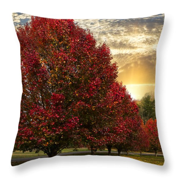 Trees on Fire Throw Pillow by Debra and Dave Vanderlaan