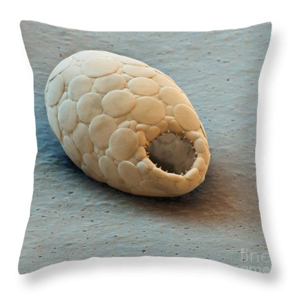 Trinema Amoeba Sem Throw Pillow by Eye of Science