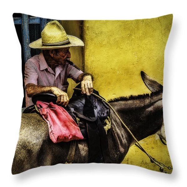 Trinidad in Color Part III - DonkeyBoy Throw Pillow by Erik Brede