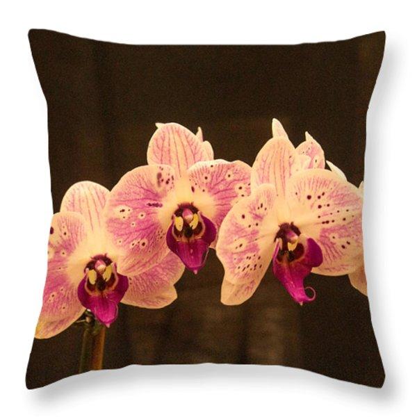 Triple Orchid Arrangement 1 Throw Pillow by Douglas Barnett