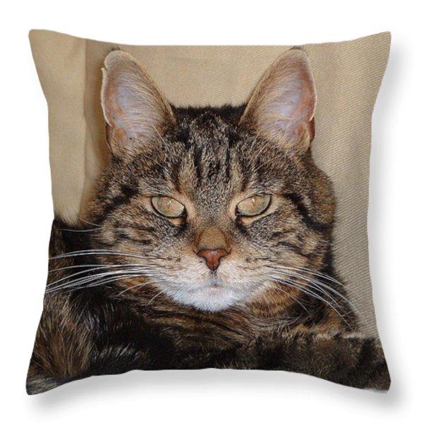 Tripod Throw Pillow by Guy Whiteley