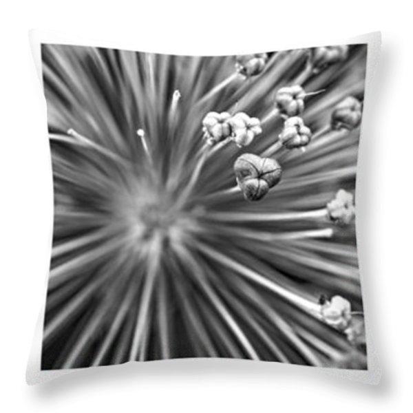 Triptych Allium Flower Throw Pillow by Alexander Senin