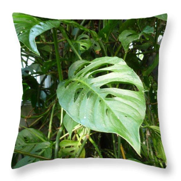 Tropical Green Foliage Throw Pillow by Lingfai Leung