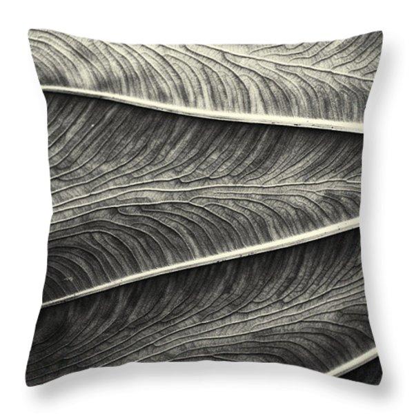 Tropical Leaf No.1 2009 V.2 Throw Pillow by Joseph Duba