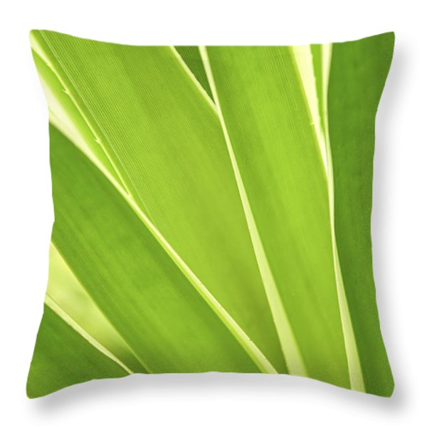 Tropical leaves Throw Pillow by Elena Elisseeva