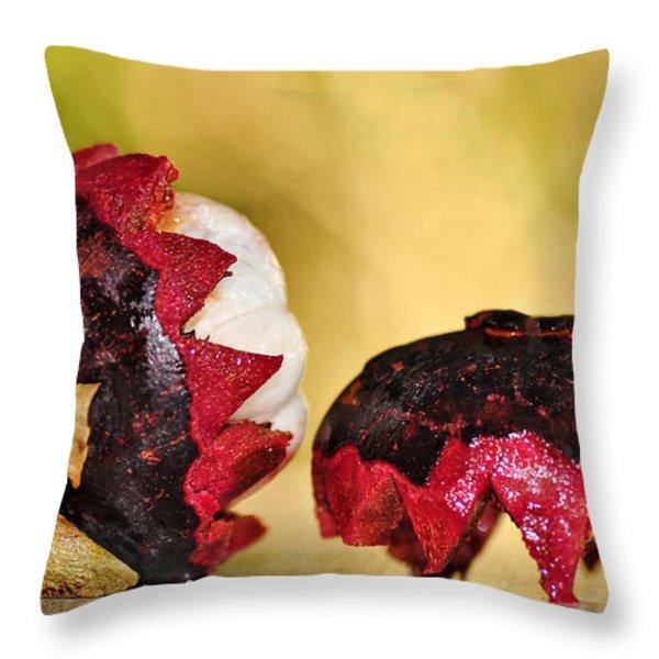 Tropical Mangosteen Throw Pillow by Kaye Menner