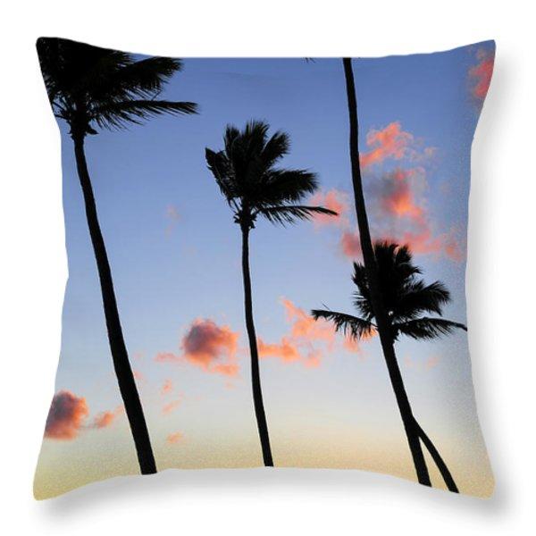 Tropical Sunrise Throw Pillow by Elena Elisseeva