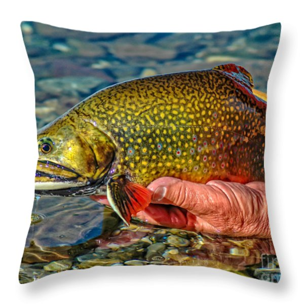 Trout Throw Pillow by Edward Fielding