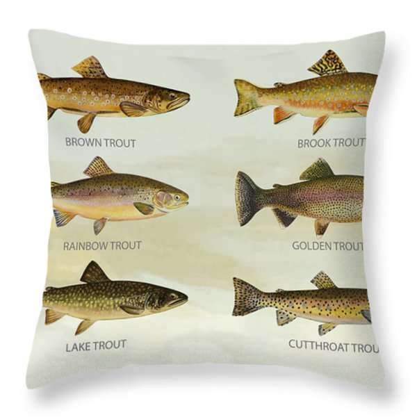 Trout Species Throw Pillow by Aged Pixel