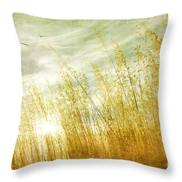 True Love Transcends Time Throw Pillow by Linda Lees