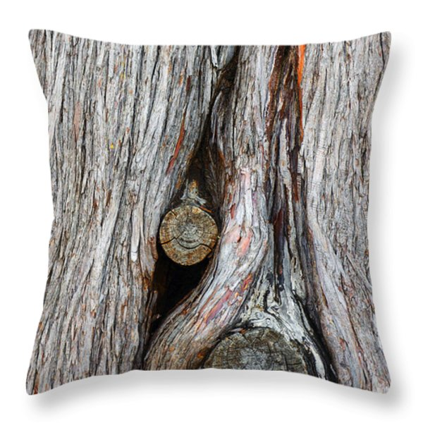 Trunk Knot Throw Pillow by Carlos Caetano
