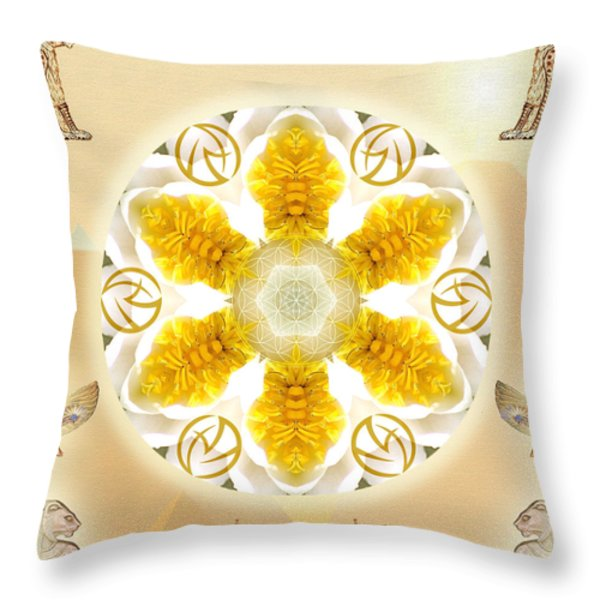 Truth Throw Pillow by Alicia Kent