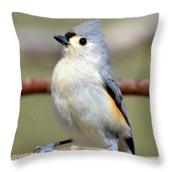 Tufted Titmouse Throw Pillow by Susan Leggett