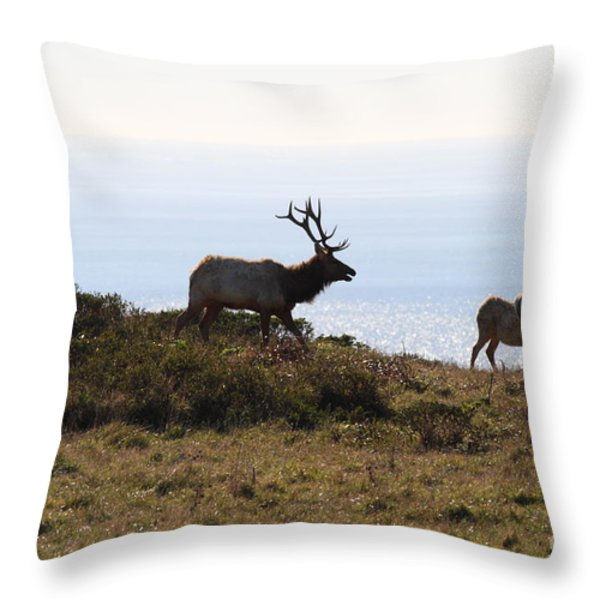 Tules Elks of Tomales Bay California - 7D21230 Throw Pillow by Wingsdomain Art and Photography