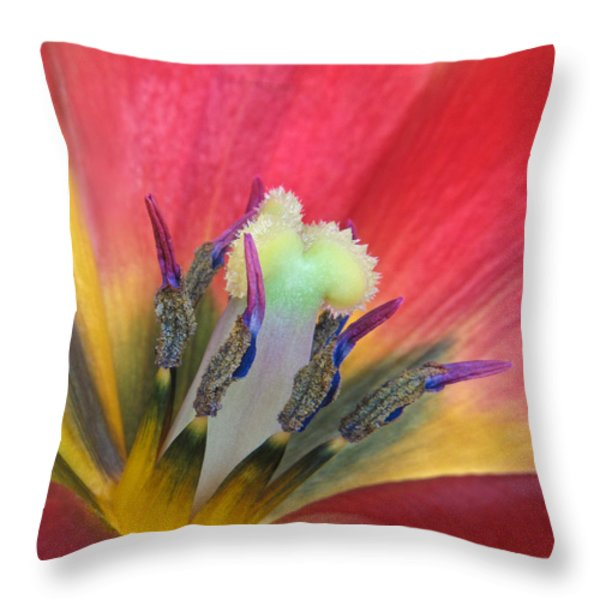Tulip Detail Throw Pillow by David and Carol Kelly