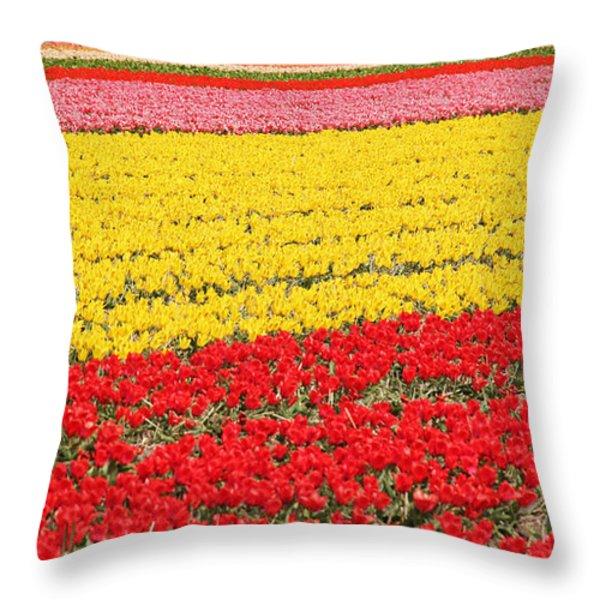 Tulip Fields 1 Throw Pillow by Jasna Buncic