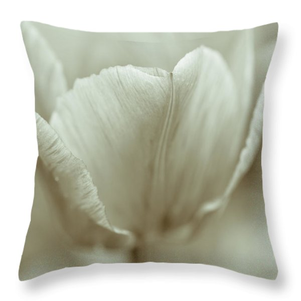Tulip Throw Pillow by Frank Tschakert
