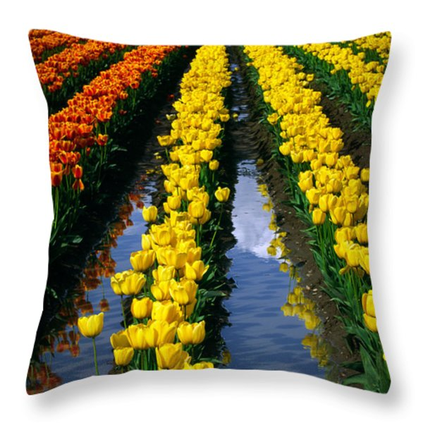 Tulip Reflections Throw Pillow by Inge Johnsson