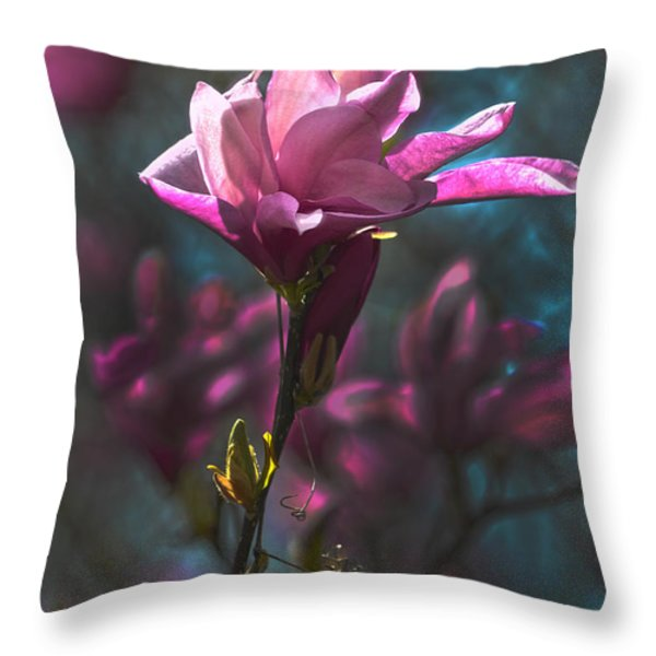 Tulip Tree Blossom Throw Pillow by Sandi OReilly
