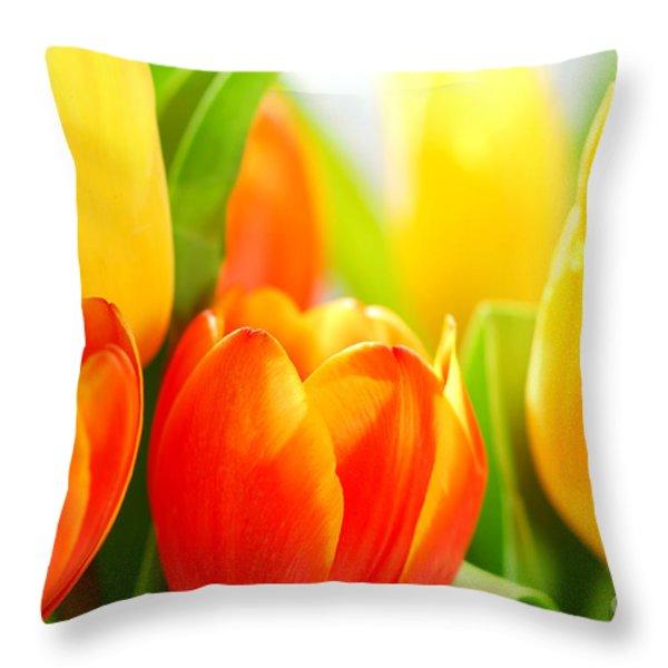 Tulips Throw Pillow by Elena Elisseeva