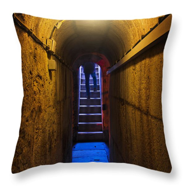 Tunnel Exit Throw Pillow by Carlos Caetano