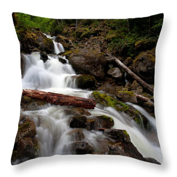 Turbulent Flow Throw Pillow by Mike Reid