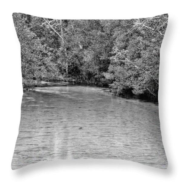 Turkey Creek BW Throw Pillow by JC Findley